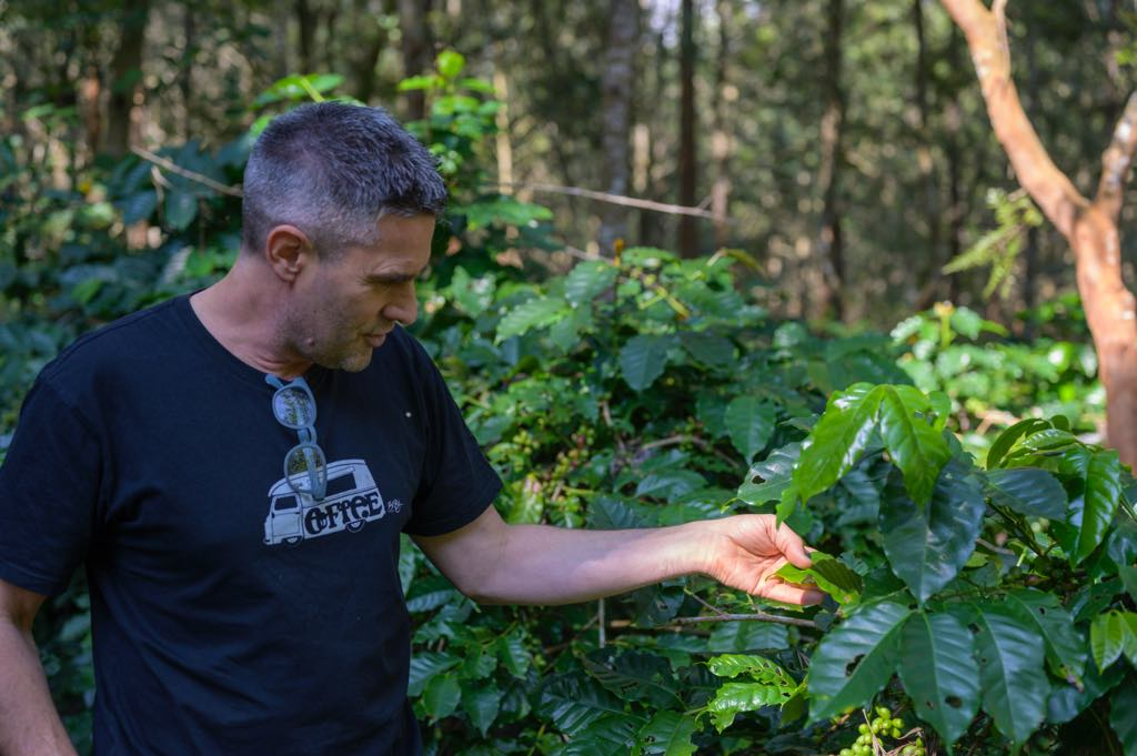 Jason Hall and Coffee Trees
